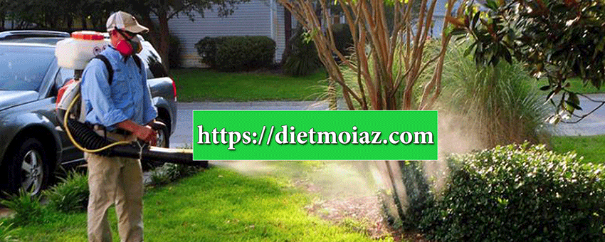 Phun diệt muỗi và các loại côn trùng trong nhà như: ruồi, muỗi, kiến, gián
