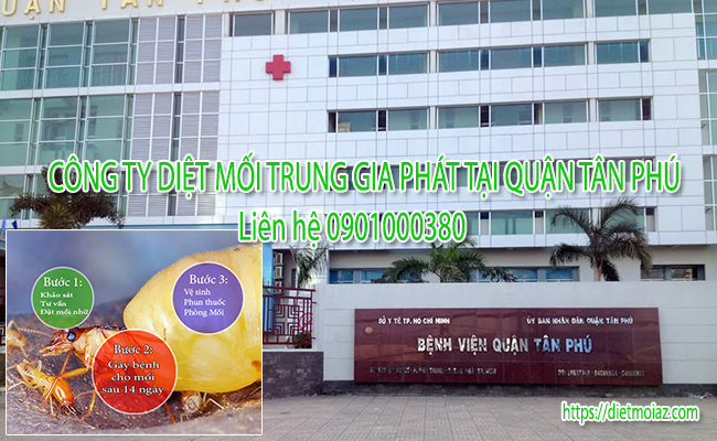 Công ty diệt mối Trung Gia Phát tại quận Tân Phú