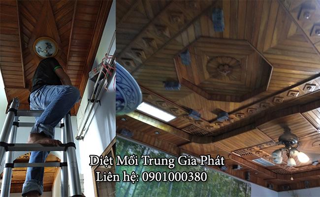 Diệt mối trên trần nhà gỗ tại Nghệ An