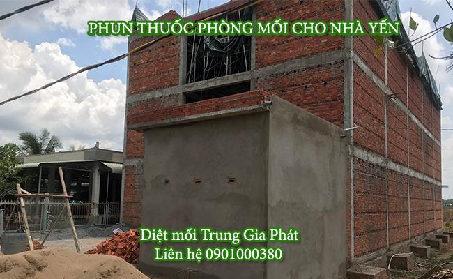 Phun thuốc phòng chống mối cho nhà yến tại Bà Rịa Vũng Tàu